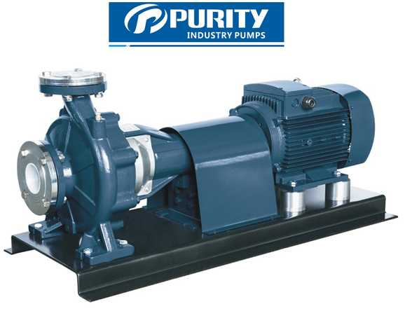 PSM Standard Centrifugal Pump Coupling with Electric Motor