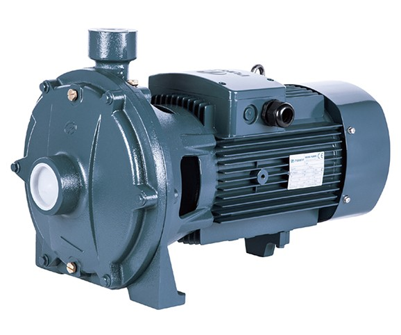 P2C series double impeller thread port centrifugal pump from purity for water supply and irrigation